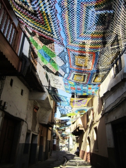 Tejiendo La Calle (2)